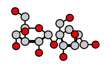 fructose: Sucrose (table sugar, saccharose) molecule. Disaccharide composed of glucose and fructose. Haworth-like projection; oxygen (red) and carbon (gray) atoms shown as color-coded circles. Illustration