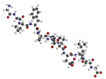 Gliadin derived peptide. Immunogenic breakdown product of gliadin (gluten), playing an essential role in celiac disease. Atoms shown as spheres with conventional color coding: hydrogen (white), carbon (grey), oxygen (red), nitrogen (blue). photo