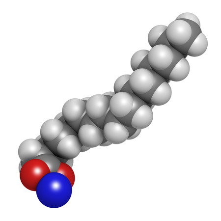 Sodium palmitate soap molecule. Prepared from palm oil by saponification. Atoms are represented as spheres with conventional color coding: hydrogen (white), carbon (grey), sodium (blue), oxygen (red). photo