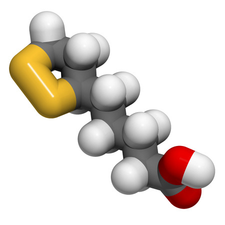 Lipoic acid enzyme cofactor molecule. Present in many nutritional supplements. Believed to have anti-oxidant, anti-aging and weight-loss effects. Atoms are represented as spheres with conventional color coding: hydrogen (white), carbon (grey), oxygen (red