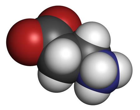 precursor: Beta-alanine molecule. Naturally occurring beta amino acid. Precursor of carnosine. Athletes often use beta-alanine supplements. Atoms are represented as spheres with conventional color coding: hydrogen (white), carbon (grey), nitrogen (blue), oxygen (red