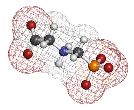 genetically engineered: Glyphosphate herbicide molecule. Crops resistant to glyphosphate (genetically modified organisms, GMO) have been produced by genetic engineering. Atoms are represented as spheres with conventional color coding: hydrogen (white), carbon (grey), nitrogen (b