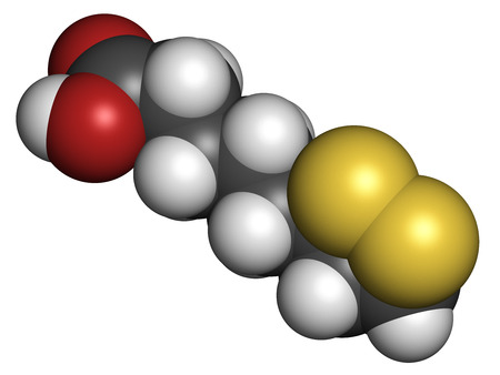believed: Lipoic acid enzyme cofactor molecule. Present in many nutritional supplements. Believed to have anti-oxidant, anti-aging and weight-loss effects. Atoms are represented as spheres with conventional color coding: hydrogen (white), carbon (grey), oxygen (red