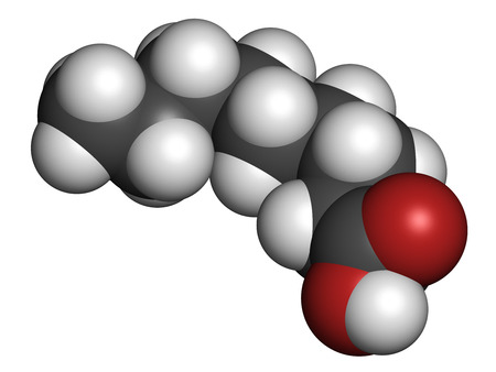 rancid: Nonanoic acid (pelargonic acid) molecule. Ammonium salt used as broad-spectrum herbicide. Atoms are represented as spheres with conventional color coding: hydrogen (white), carbon (grey), oxygen (red).