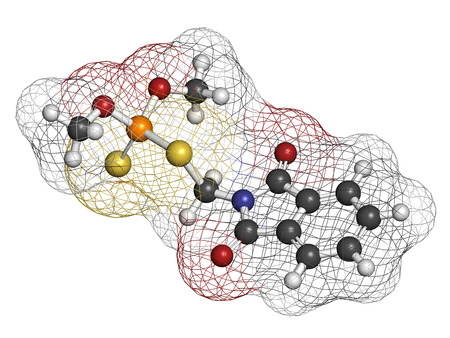 phosphorus: Phosmet organophosphate insecticide molecule. Atoms are represented as spheres with conventional color coding: hydrogen (white), carbon (grey), nitrogen (blue), oxygen (red), sulfur (yellow), phosphorus (orange).