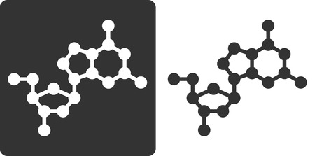 guanosine: Deoxyguanosine (dG) DNA building block, flat icon style. Oxygen, carbon and nitrogen atoms shown as circles; Hydrogen atoms omitted.