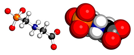 genetically modified organisms: Glyphosphate herbicide molecule. Crops resistant to glyphosphate (genetically modified organisms, GMO) have been produced by genetic engineering. Atoms represented as spheres with conventional color.