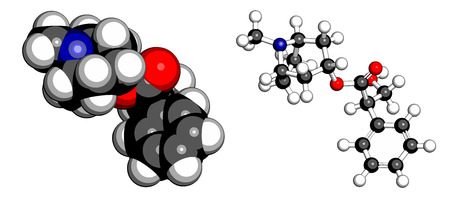 alkaloid: Atropine deadly nightshade (Atropa belladonna) alkaloid molecule. Medicinal drug and poison also found in Jimson weed (Datura stramonium) and mandrake (Mandragora officinarum). Atoms are represented as spheres with conventional color coding: hydrogen (whi