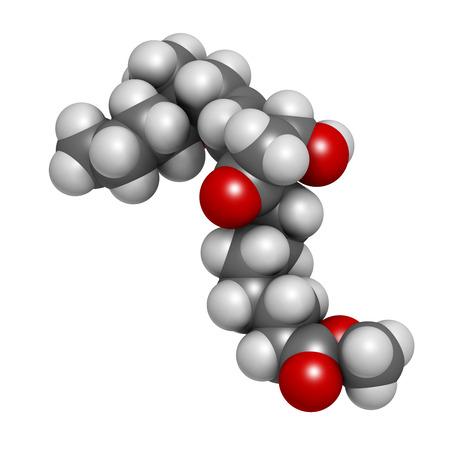 poronienie: Mizoprostol aborcji indukcji cząsteczki leku. Prostaglandyny E1 (PGE1) analog stosowany również w leczeniu nieudanego poronienia, wywołać pracy itp Atomy są reprezentowane jako kulki z konwencjonalnymi kodowania kolorów: wodór (biały), węgiel (szary), tlen (czerwony).