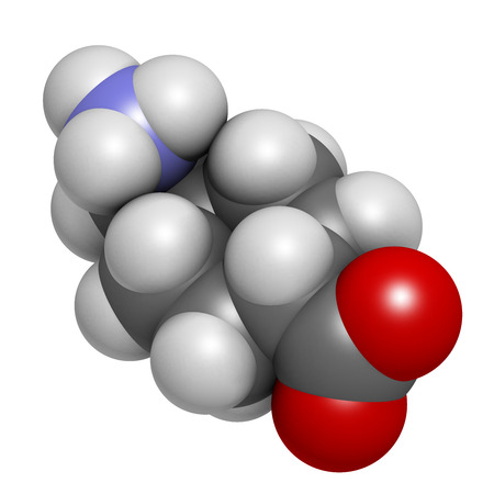 Tranexamic acid antifibrinolytic drug molecule. Prevents excessive bleeding, e.g. during surgery. Atoms are represented as spheres with conventional color coding: hydrogen (white), carbon (grey), oxygen (red), nitrogen (blue). photo