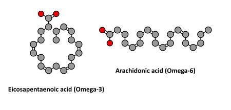 Eicosapentaensäure (EPA, Omega-3) und Arachidonsäure (AA, Omega-6)-Molekülen. Stilisierte 2D-Renderings. Standard-Bild - 27509736