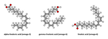 compounds: Alpha-linolenic (omega-3, ALA), gamma-linolenic (omega-6) and linoleic (omega-6) acid. Stylized 2D renderings.