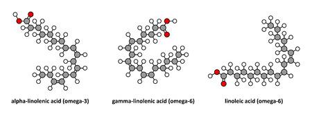 Alpha-linolenic (omega-3, ALA), gamma-linolenic (omega-6) and linoleic (omega-6) acid. Stylized 2D renderings.