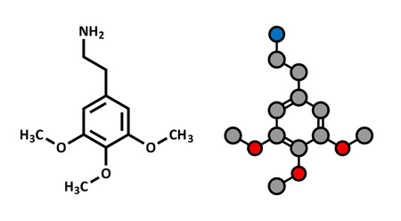 mescaline: Mescaline psychedelic drug molecule. Present in peyote cactus. Stylized 2D rendering and conventional skeletal formula. Illustration