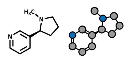 中毒性の: ニコチン タバコの覚醒剤の分子。習慣性の主成分でタバコの煙。様式化された 2D レンダリングと従来の骨格式。