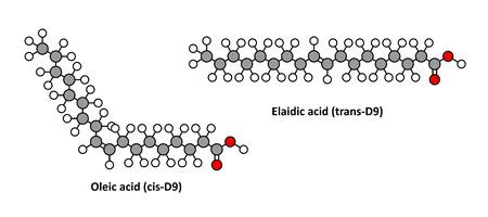 L'acide ol�ique (om�ga-9, cis) et de son acide �laidique isom�re trans. L'acide �la�dique est le principal gras trans dans les huiles v�g�tales hydrog�n�es. Rendus 2D stylis�s.