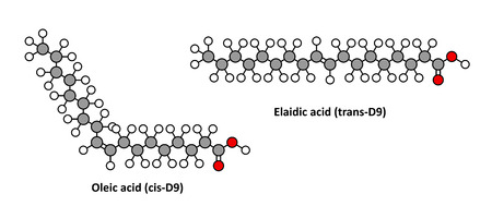 Oleic acid (omega-9, cis) and its trans isomer elaidic acid. Elaidic acid is the main trans fat in hydrogenated vegetable oils. Stylized 2D renderings.