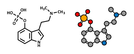 psilocybin: Psilocybin mushroom psychedelic drug molecule. Present in psilocybe and other mushrooms. Stylized 2D rendering and conventional skeletal formula.