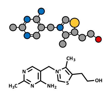 supplementation: Vitamin B1 (thiamine) molecule. Stylized 2D rendering and conventional skeletal formula.