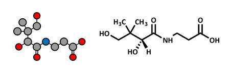 supplementation: Vitamin B5 (pantothenic acid, pantothenate) molecule. Stylized 2D rendering and conventional skeletal formula.