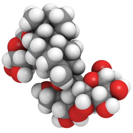 steviol: Stevioside natural sweetener and sugar substitute molecule. Atoms are represented as spheres with conventional color coding: hydrogen (white), carbon (grey), oxygen (red). Stock Photo