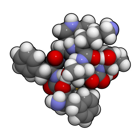 Octreotide drug molecule. Mimic of somatostatin. Inhibits secretion of a number of hormones, including growth hormone, glucagon and insulin. Atoms are represented as spheres with conventional color coding: hydrogen (white), carbon (grey), oxygen (red), ni photo