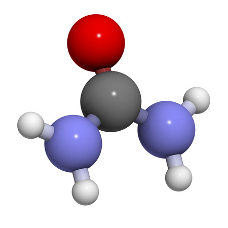 Urea (carbamide) molecule. Used as a fertilizer and in many skin care products. Atoms are represented as spheres with conventional color coding: hydrogen (white), carbon (grey), oxygen (red), nitrogen (blue). photo