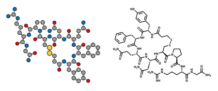 hemophilia: Desmopressin peptide, synthetic replacement of vasopressin hormone, chemical structure. Used in treatment of bedwetting. Conventional skeletal formula and stylized representation, showing atoms (except hydrogen) as color coded circles.