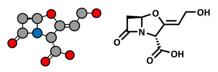 penicillin: Clavulanic acid beta-lactamase blocker drug, chemical structure. Often combined with beta-lactam class antibiotics. Conventional skeletal formula and stylized representation, showing atoms (except hydrogen) as color coded circles. Illustration