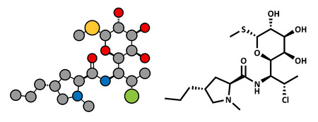 ribosome: Clindamycin antibiotic drug (lincosamide class), chemical structure. Conventional skeletal formula and stylized representation, showing atoms (except hydrogen) as color coded circles.