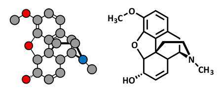 recreational drug: Codeine pain and cough relief drug, chemical structure. Conventional skeletal formula and stylized representation, showing atoms (except hydrogen) as color coded circles.