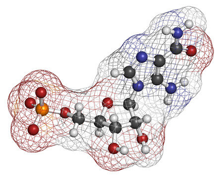 monophosphate: AICA ribonucleotide (AICAR) performance enhancing drug molecule. Used as doping agent. Atoms are represented as spheres with conventional color coding: hydrogen (white), carbon (grey), oxygen (red), nitrogen (blue), sulfur (yellow).