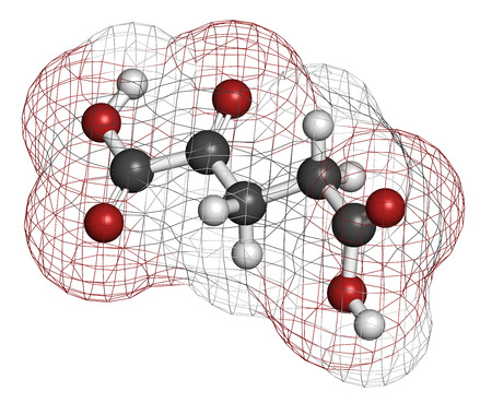 Alpha-ketoglutaric acid (ketoglutarate, oxo-glutarate). Intermediate molecule in the Krebs cycle. Found to prolong lifespan (in nematodes). Atoms are represented as spheres with conventional color coding: hydrogen (white), carbon (grey), oxygen (red). photo