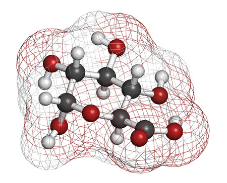 Glucuronic acid molecule. Glucuronidation of xenobiotics plays role in drug metabolism, giving glucuronides. Atoms are represented as spheres with conventional color coding: hydrogen (white), carbon (grey), oxygen (red). photo