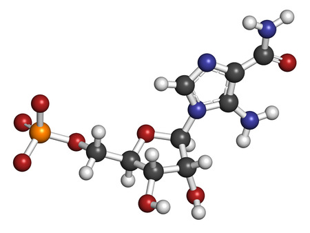 enhancing: AICA ribonucleotide (AICAR) performance enhancing drug molecule. Used as doping agent. Atoms are represented as spheres with conventional color coding: hydrogen (white), carbon (grey), oxygen (red), nitrogen (blue), sulfur (yellow).