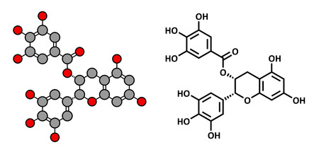 gallic: Epigallocatechin gallate (EGCG) green tea polyphenol molecule. Has antioxidant properties and may contribute to health effects of tea. Stylized 2D rendering and conventional skeletal formula. Illustration