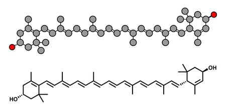 carotenoid: Mol�cula carotenoide lute�na. Nutrientes presentes en los vegetales de hojas verdes como la espinaca y la col rizada. Renderizados en 2D estilizadas y f�rmula esqueletal convencional. Vectores