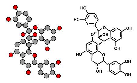 urinario: Proantocianidina A2 (procyanidin A2, A2 PAC) molecola. Presente nel mirtillo (succo) e un numero di altre piante. Utilizzato nella prevenzione del tratto urinario infarto. Il rendering 2D stilizzato e formula scheletrica convenzionale. Vettoriali