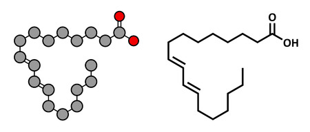 rumen: Rumenic acid (bovinic acid, conjugated linoleic acid, CLA) fatty acid molecule. Stylized 2D rendering and conventional skeletal formula.