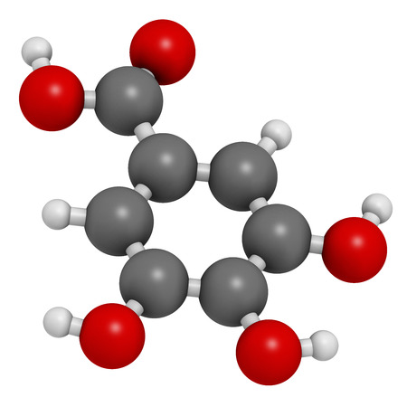 tannin: Gallic acid (trihydroxybenzoic acid) molecule. Present in many plants, including oak, tea and sumac. Both in the free form and is part of tannin compounds. Atoms are represented as spheres with conventional color coding: hydrogen (white), carbon (grey), o