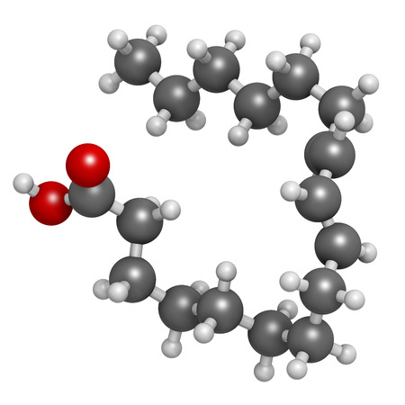 rumen: Rumenic acid (bovinic acid, conjugated linoleic acid, CLA) fatty acid molecule. Atoms are represented as spheres with conventional color coding: hydrogen (white), carbon (grey), oxygen (red).