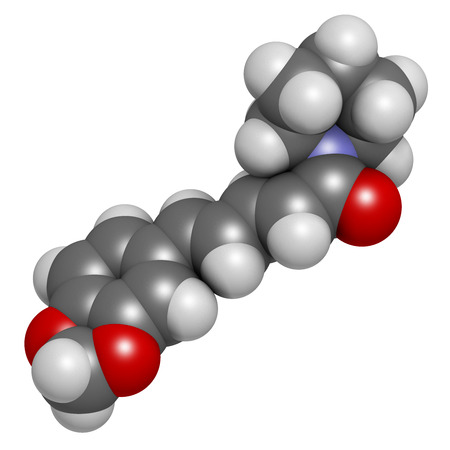 piperine: Piperine black pepper molecule. Responsible for the pungency of black pepper and long pepper. Atoms are represented as spheres with conventional color coding: hydrogen (white), carbon (grey), oxygen (red), nitrogen (blue). Stock Photo