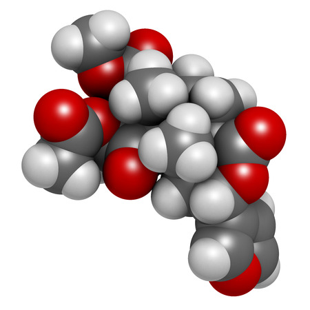 entheogen: Salvinorin A entheogen molecule. Psychotropic molecule from Salvia divinorum. Atoms are represented as spheres with conventional color coding: hydrogen (white), carbon (grey), oxygen (red). Stock Photo