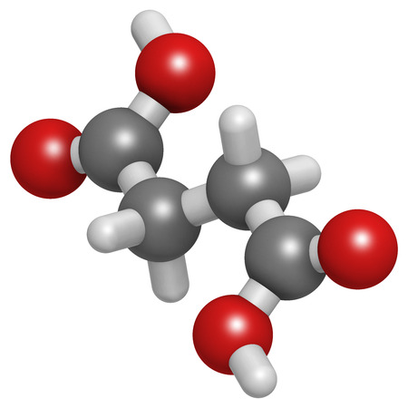 citric: Succinic acid (butanedioic acid, spirit of amber) molecule. Intermediate of citric acid cycle. Salts and esters known as succinates. Atoms are represented as spheres with conventional color coding: hydrogen (white), carbon (grey), oxygen (red).