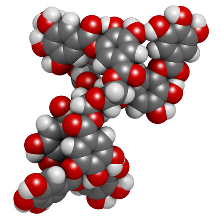 tannin: Tannic acid molecule (one isomer shown). Type of tannin. Atoms are represented as spheres with conventional color coding: hydrogen (white), carbon (grey), oxygen (red).