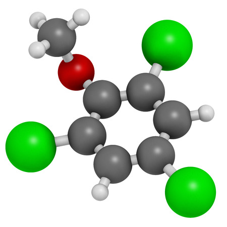 taint: Trichloroanisole (TCA) cork taint molecule. Produced by fungi and bacteria, responsible for cork taint in bottled wine. Atoms are represented as spheres with conventional color coding: hydrogen (white), carbon (grey), oxygen (red), chlorine (green). Stock Photo