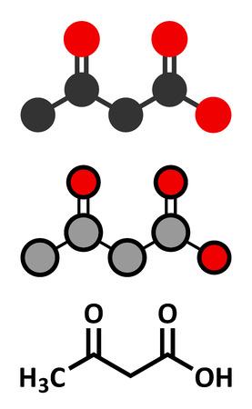 Ketone body (acetoacetic acid, diacetic acid) molecule. Stylized 2D renderings and conventional skeletal formula.