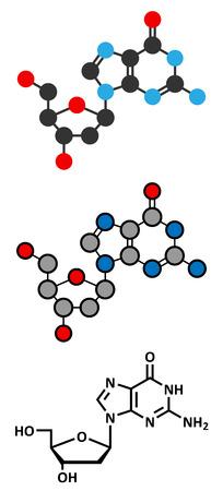 guanosine: Deoxyguanosine (dG) nucleoside molecule.