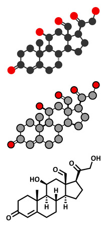hormone: Aldosterone steroid hormone molecule.