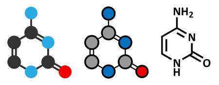 crick: Citosina componente nucleobase pirimidina. Una delle basi presenti nel DNA e RNA. Rendering 2D stilizzate e formula scheletrico convenzionale.